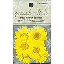Pressed Petals - Yellow Daisy Flower Confetti
